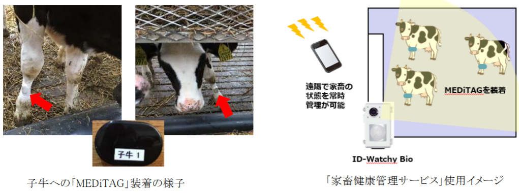 日本全薬工業など3社、IoTで家畜のストレスを管理する実証実験を開始