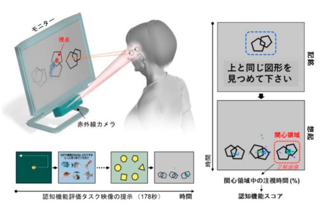 大阪大学 目の動きの解析で認知機能評価 研究成果発表