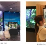 凸版印刷 地域活性化のため3空港で最先端の映像配信開始