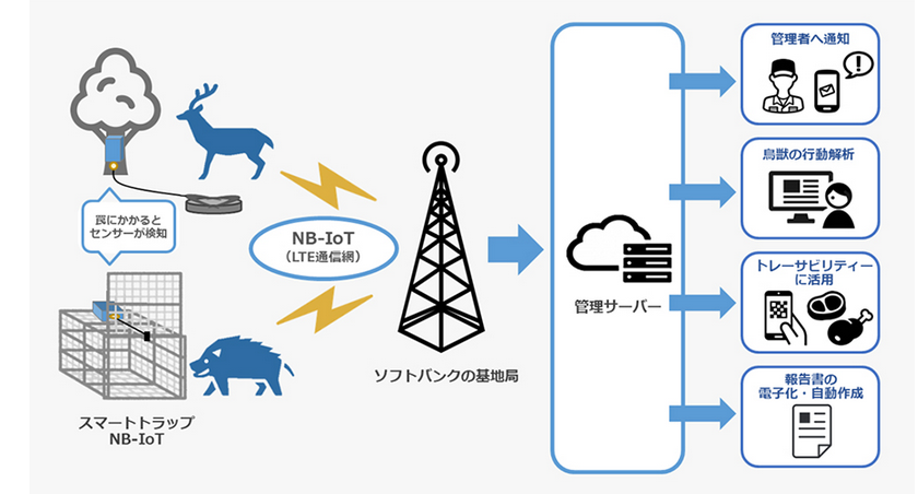 ソフトバンクなどが、NB-IoTを活用した鳥獣罠センサーを開発