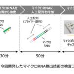 東芝、血液1滴から13種類のがんを99%の精度で検出する技術を開発