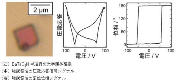 北海道大学が、新しい強誘電性物質を発見