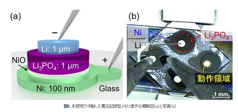 東京工業大学などが、新しい技術を用いた情報メモリ素子を開発