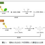 名古屋工業大学が、太陽光エネルギーを燃料電池に貯める技術を開発